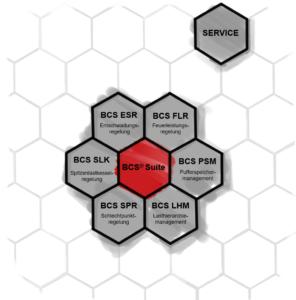BCS-Module im Überblick